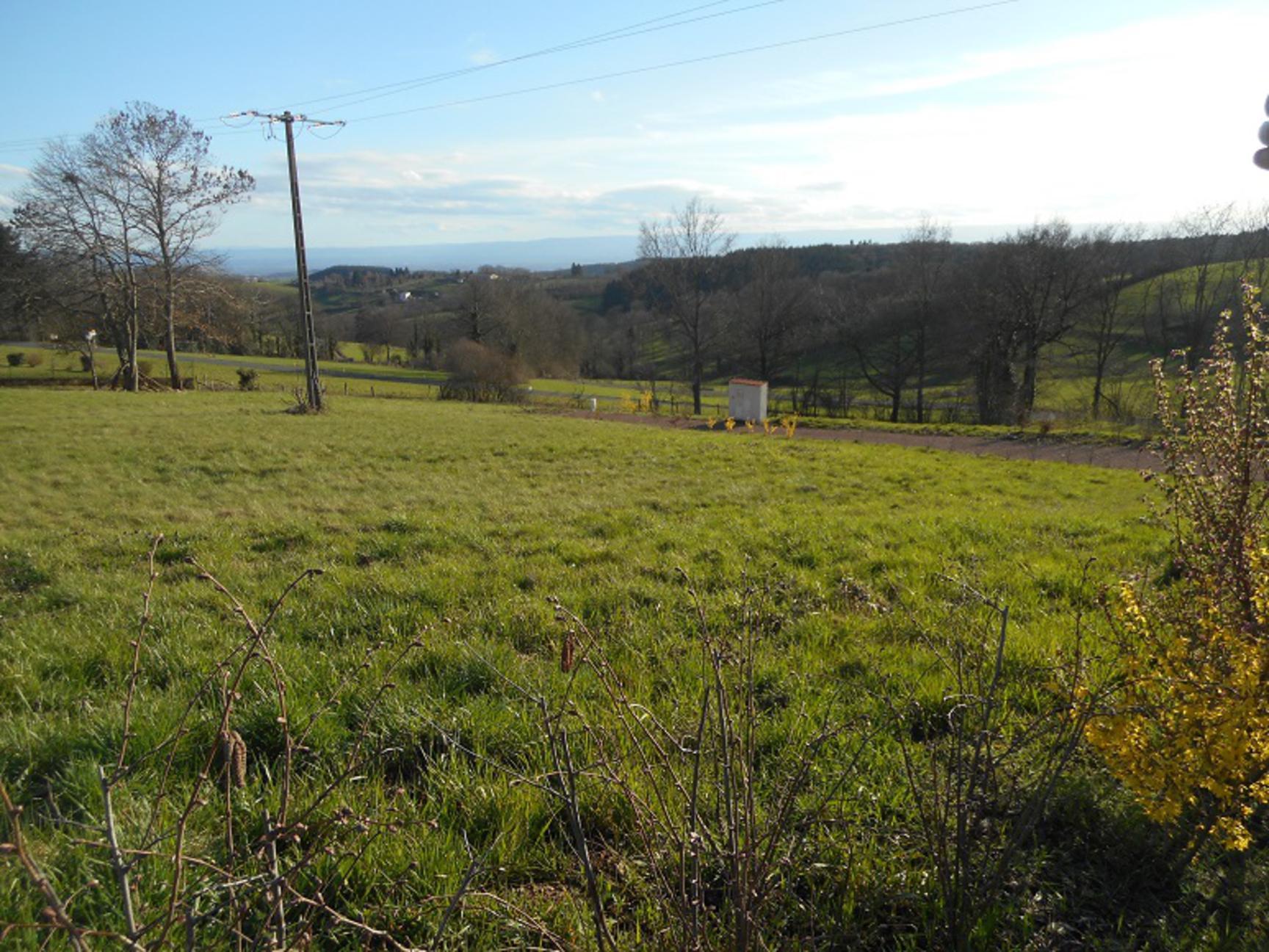 vente terrain Sainte-Agathe-en-Donzy Sainte-Agathe-en-Donzy 42510