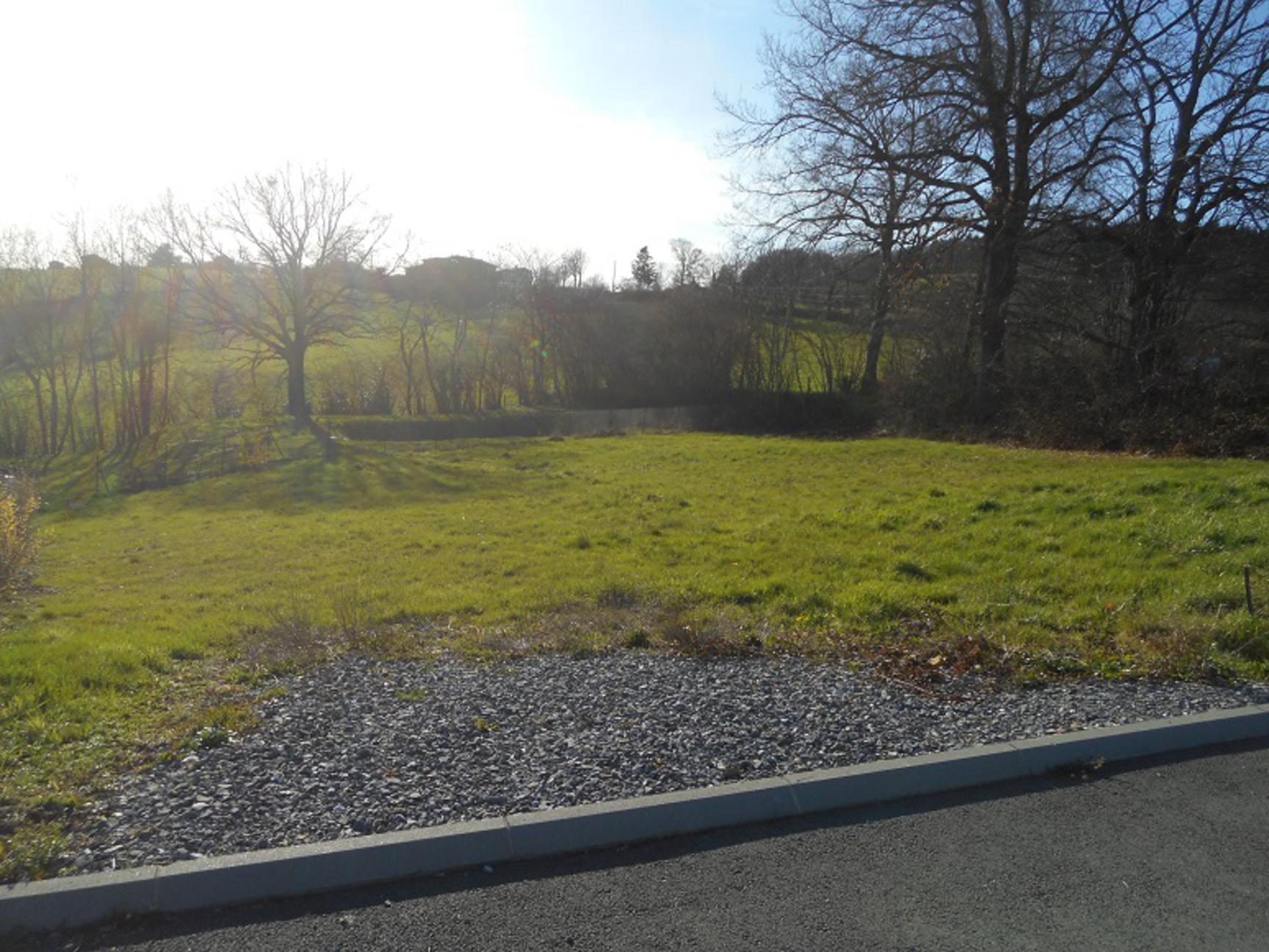 vente terrain Balbigny Balbigny 42510