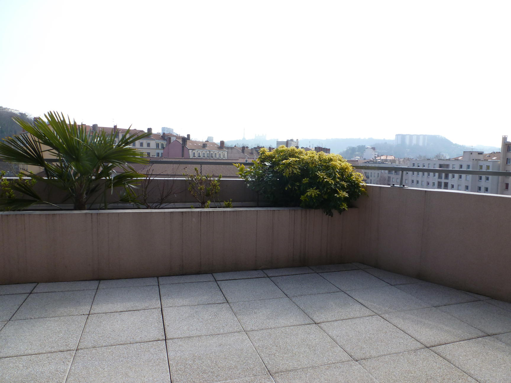 Frederique guillerme agence immobiliere appartement for Appartement terrasse lyon